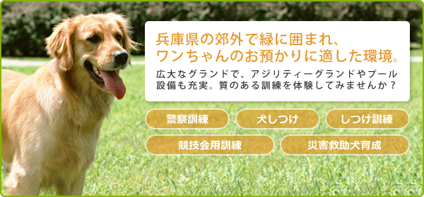兵庫県の郊外で緑に囲まれ、ワンちゃんのお預かりに適した環境。