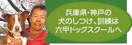 兵庫県・神戸の犬のしつけ、訓練は六甲ドッグスクールへ