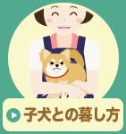 子犬との暮し方